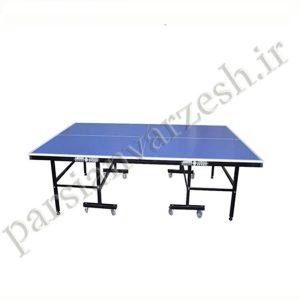 میز پینگ پنگ T113